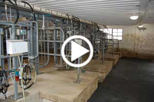 Milking Parlor Video Picture Link
